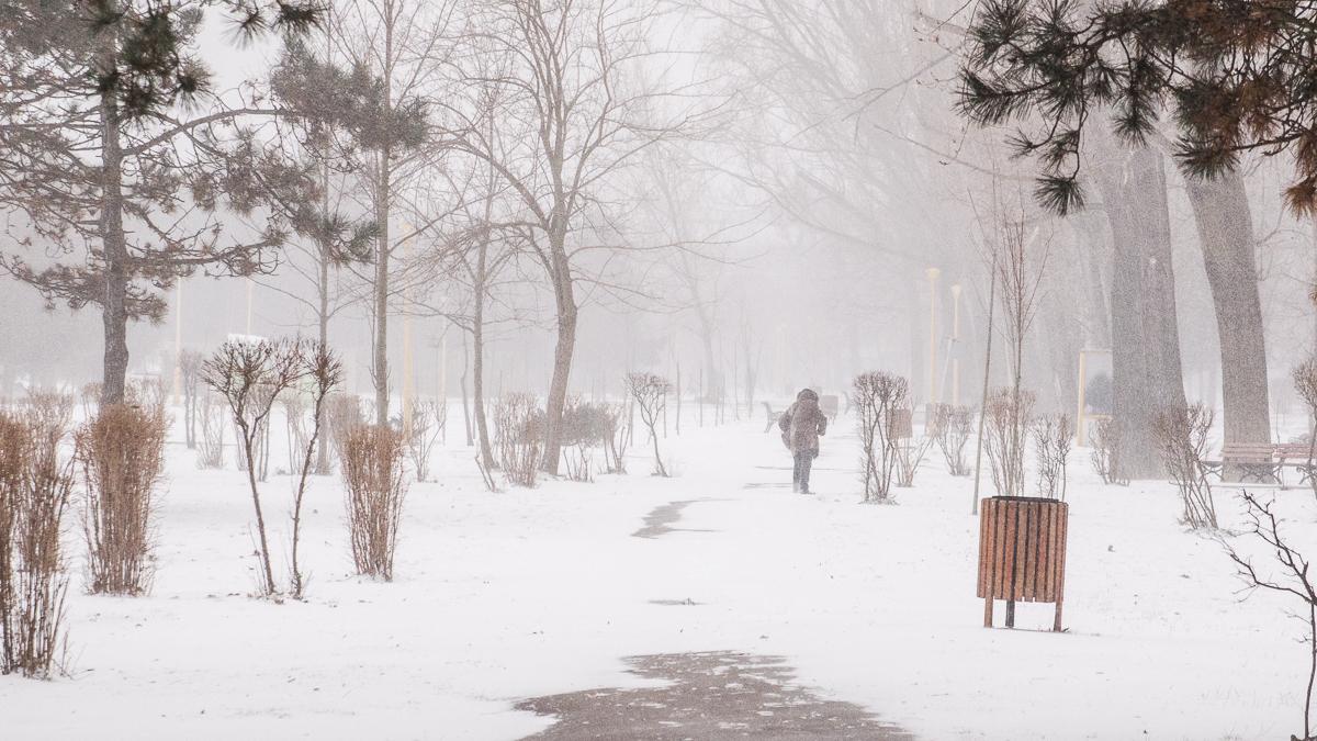 26 februarie 2018 iarna (94 of 109)