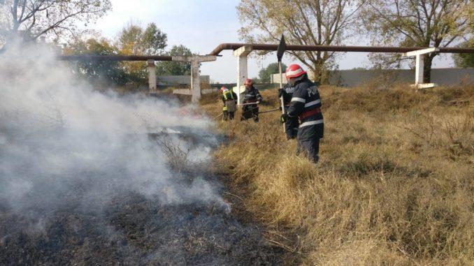 Incendiu de vegetație la Tulcea. FOTO ISU Delta