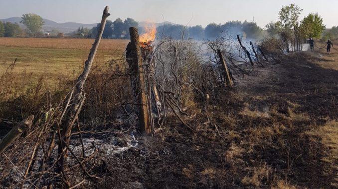 Incendiu la Jijila. FOTO ISU Delta