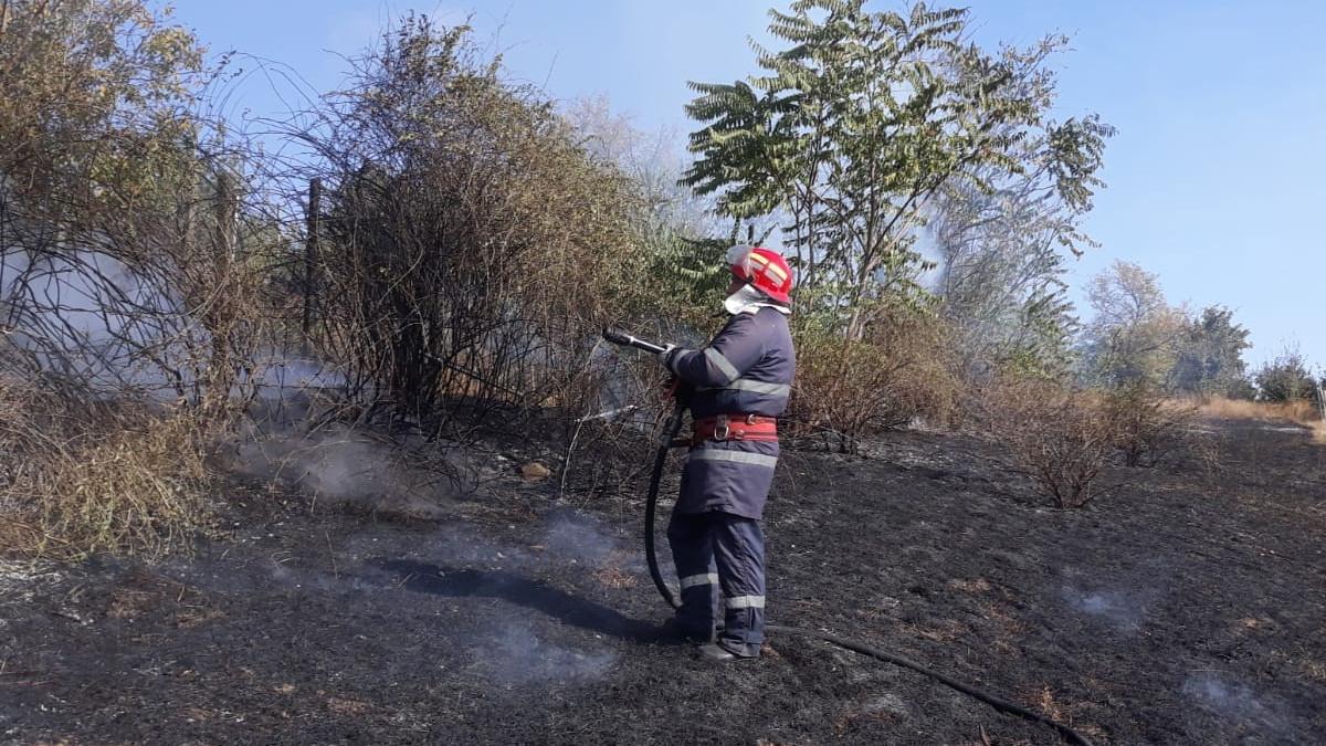 pompier vegetatie incendiu