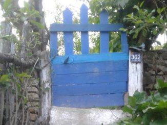 Poarta unei gospodării din localitatea Fântâna Mare. FOTO Elite Art